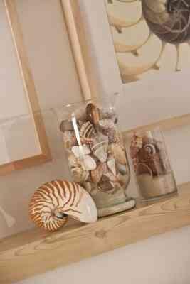 Cómo Hacer Conchas de mar y Arena en un Frasco