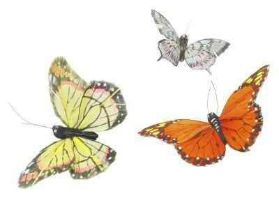 Cómo Hacer una Mariposa Modelo