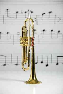 Los Instrumentos De Viento Casero