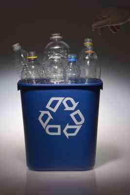 Cómo Hacer un Dinosaurio de materiales Reciclables