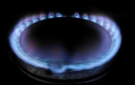 Pros & Contras de Hornos de Gas al aire libre