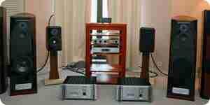 Bi-cable de audio de los altavoces