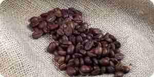 Compost con café