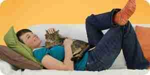 Revisión gato orinar problemas: gato entrenamiento para ir al baño