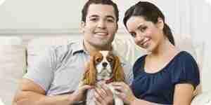 Elegir un perro para un apartamento: elegir una raza de perro