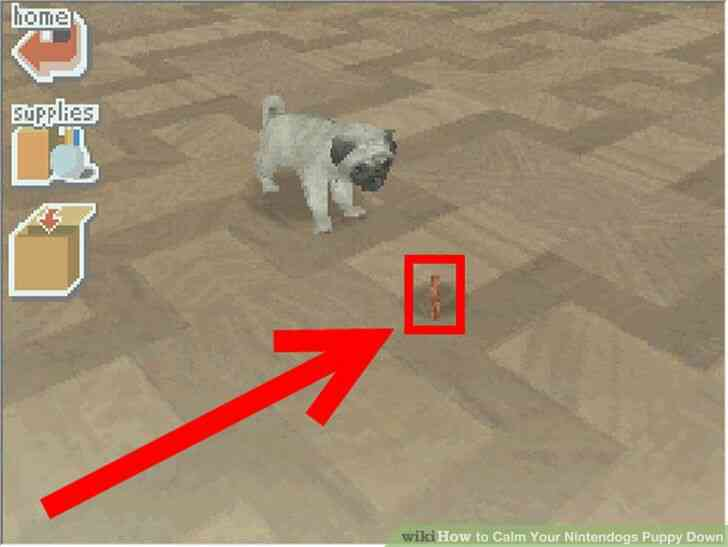Imagen titulada Calmar Sus Diferentes Cachorro Paso 3