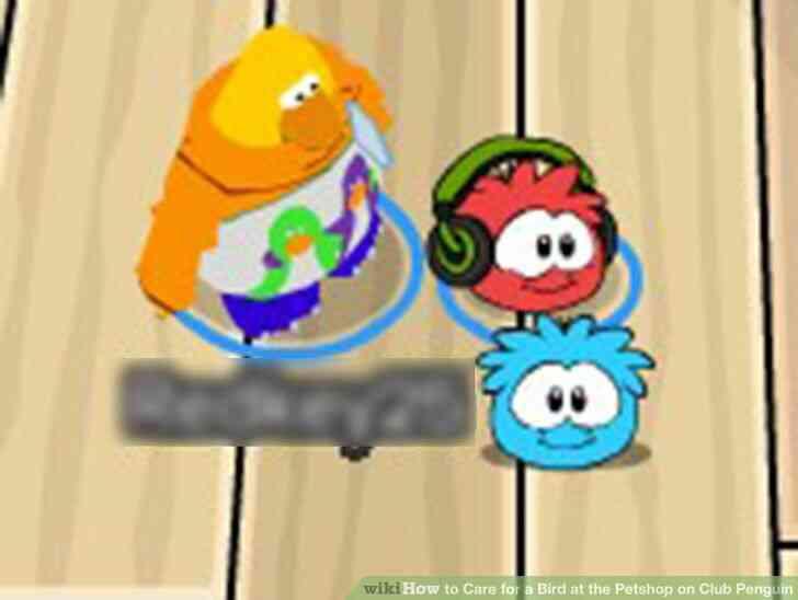 Imagen titulada cuidar a un Pájaro en la Petshop en Club Penguin Paso 4