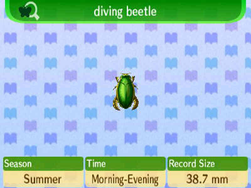 Cómo Atrapar a un Buceo Escarabajo en Animal Crossing: New Leaf