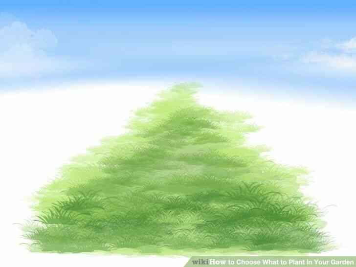 Imagen titulada Elegir Qué Plantar en Tu Jardín Paso 3Bullet4