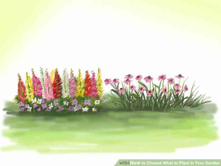 Imagen titulada Elegir Qué Plantar en Tu Jardín Paso 3Bullet6