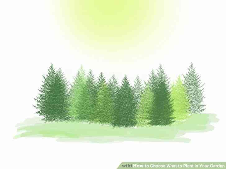 Imagen titulada Elegir Qué Plantar en Tu Jardín Paso 3Bullet1