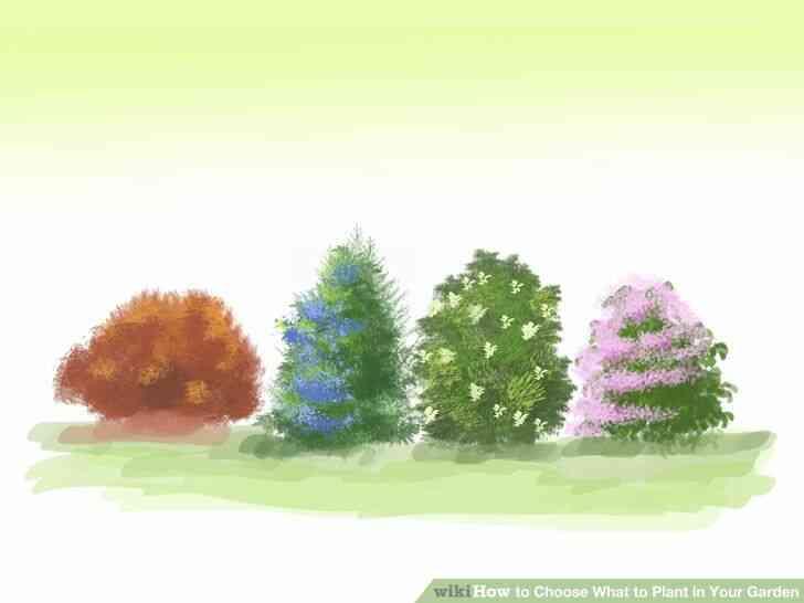 Imagen titulada Elegir Qué Plantar en Tu Jardín Paso 3Bullet3