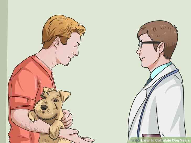 Imagen titulada Calcular los Años de Perro Paso 8