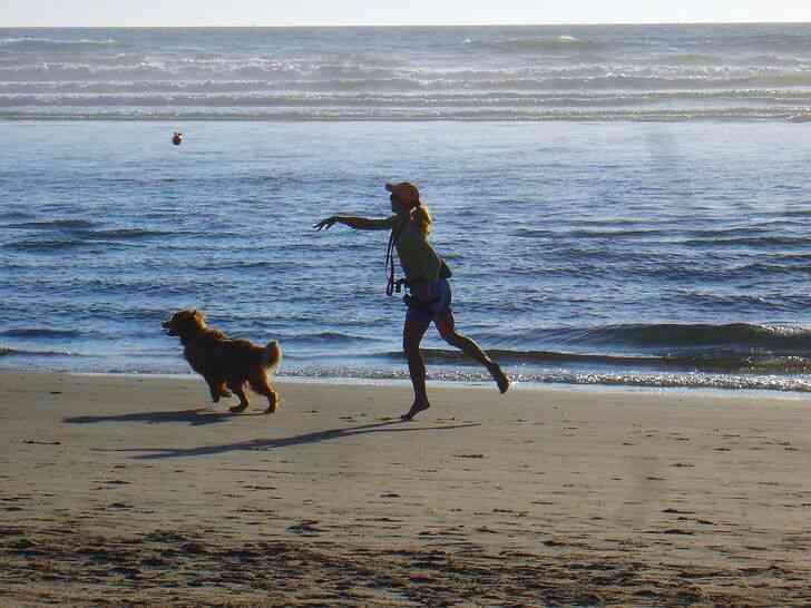 Imagen titulada Dog_on_beach 6