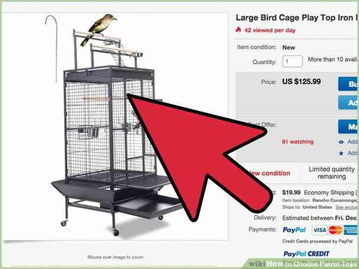 Imagen titulada Elegir Parrot Juguetes Paso 1