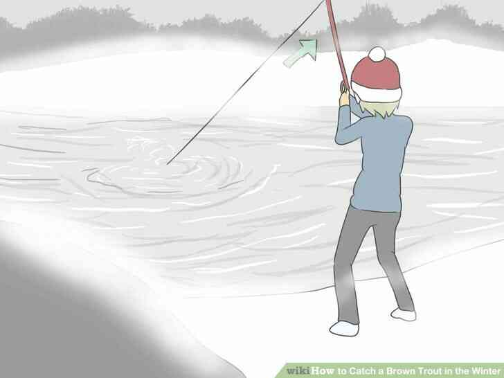 Imagen titulada Atrapar una Trucha Marrón en el Invierno Paso 5