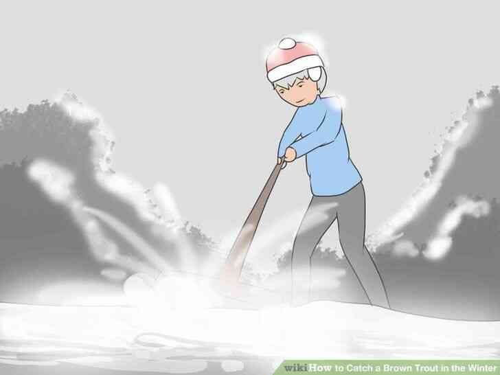 Imagen titulada Atrapar una Trucha Marrón en el Invierno Paso 6